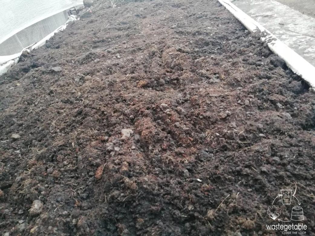 Rooftop ปลูกผักบนดาดฟ้า ปลูกผักกลางเมือง food waste เปลี่ยนเศษอาหารให้เป็นปุ๋ย วิธีปรุงดิน วิธีปลูกผัก ผัก ปลอด สาร พิษ wastegetable rooftop farming ลดโลกร้อน รักษ์โลก ผักไฮโดรโปนิกส์ ปรุงดิน เปลี่ยนดินเสียให้เป็นดินดี มือร้อน ปลูกผัก แปลงผักบนดาดฟ้า แปลงเศษอาหารให้เป็นปุ๋ย ฟาร์มบนดาดฟ้า แก้ปัญหาดิน แก้ดินเสีย เปลี่ยนดีเป็นดินเสีย ดินเสีย