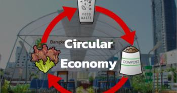 Rooftop ปลูกผักบนดาดฟ้า ปลูกผักกลางเมือง food waste เปลี่ยนเศษอาหารให้เป็นปุ๋ย วิธีปรุงดิน วิธีปลูกผัก ผัก ปลอด สาร พิษ wastegetable ลดโลกร้อน รักษ์โลก เราไม่ใช่ ผักไฮโดรโปนิกส์ เปลี่ยนดินเสียให้เป็นดินดี มือร้อน ปลูกผัก แปลงผักบนดาดฟ้า ฟาร์มบนดาดฟ้า แก้ปัญหาดิน แก้ดินเสีย เปลี่ยนเสียเป็นดินดี ดินเสีย